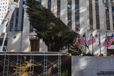 Ready Or Not, Rockefeller Center's Christmas Tree Has Arrived