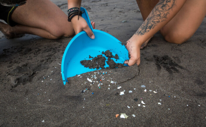 Microplastics Are Turning Up Everywhere, Even In Human Excrement : The Salt : NPR