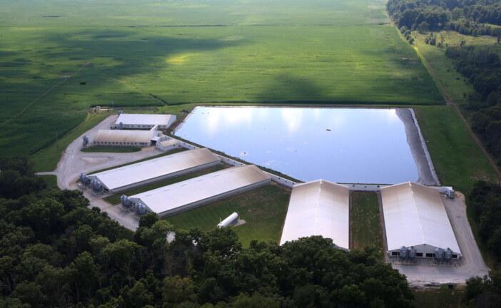 Smithfield, World's Biggest Pork Producer Pledges, To Cover Manure Ponds : The Salt : NPR