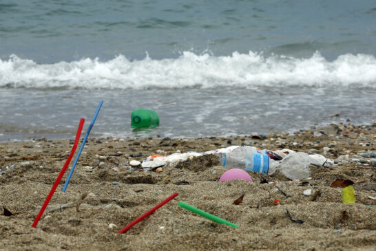 European Parliament Approves Ban On Some Single-Use Plastics, Reduction On Others : NPR