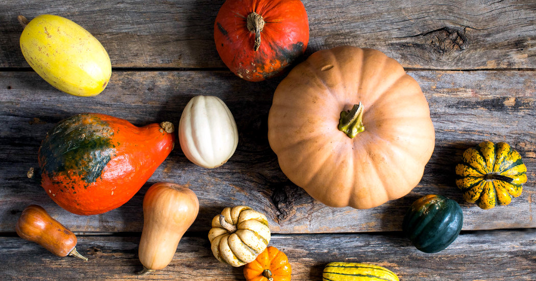Know Your Squash: How They Look, How They Cook