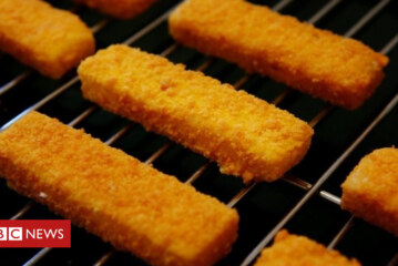 Fish fingers surprisingly sustainable, say conservationists