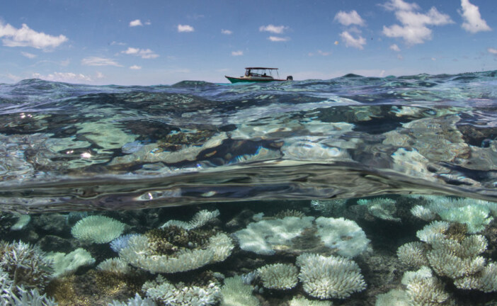 Taking the Oceans' Temperature, Scientists Find Unexpected Heat