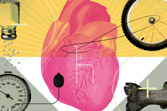 How Emotions Can Affect the Heart