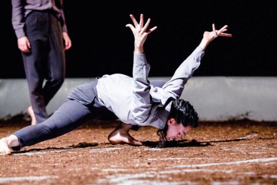 10 Dance Performances to See in N.Y.C. This Weekend