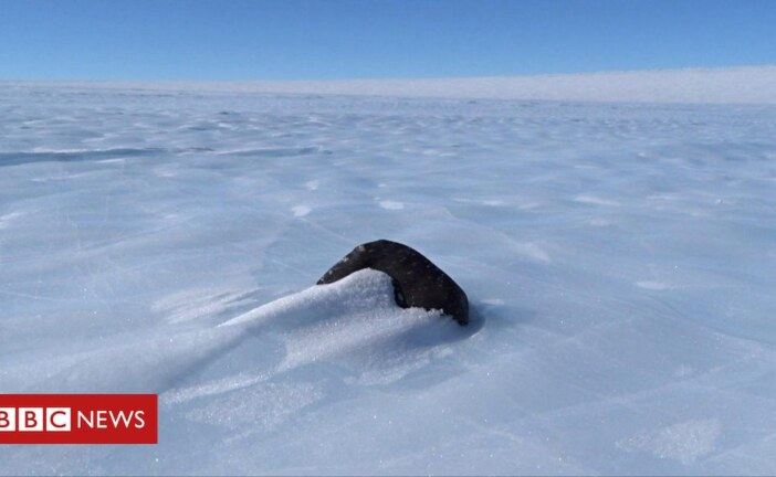 Hunting for space rocks in Antarctica