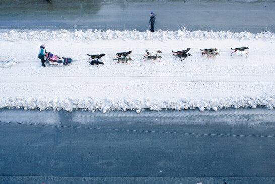 The Mush in the Iditarod May Soon Be Melted Snow