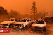 Climate change: California wildfires 'can now happen in any year'